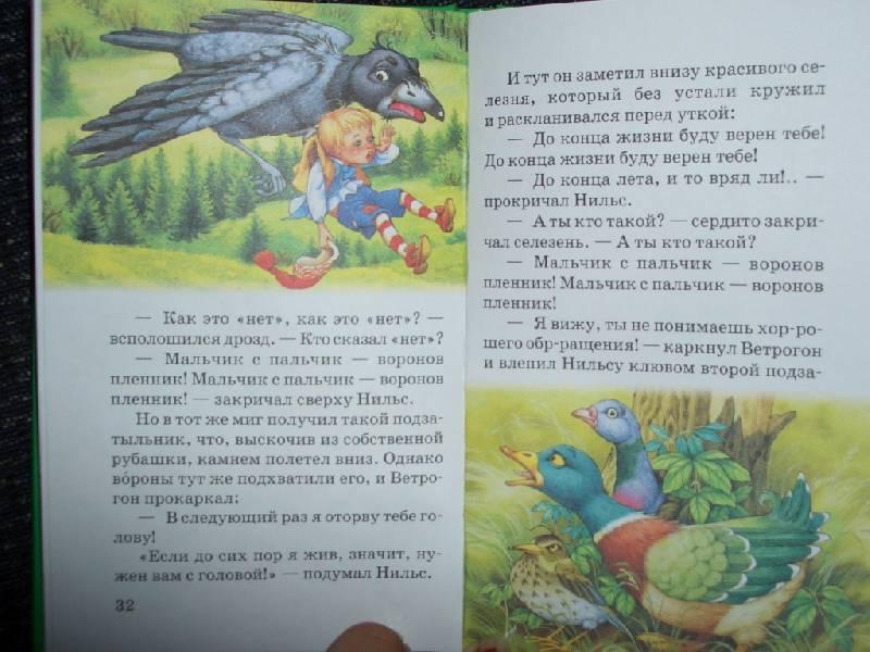Иллюстрация 1 из 6 для Рыжий разбойник - Лагерлеф Сельма Оттилия Лувиса | Лабиринт - книги. Источник: sher
