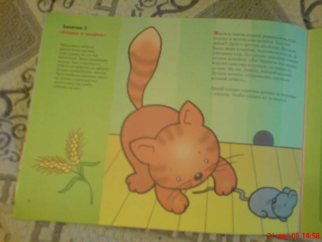 Иллюстрация 1 из 11 для Спрячь картинку. Художественный альбом для занятий с детьми 3-5 лет - Елена Янушко | Лабиринт - книги. Источник: Lisa82
