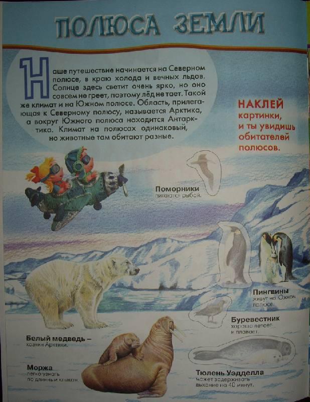 Иллюстрация 1 из 4 для От полюса до экватора (Тесты с наклейками) | Лабиринт - книги. Источник: OOlga