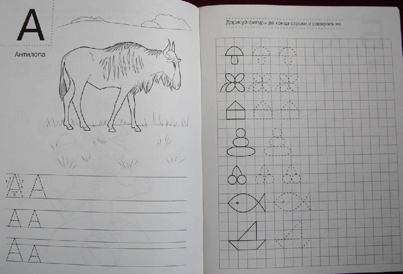 Иллюстрация 1 из 2 для Раскраски-прописи | Лабиринт - книги. Источник: OOlga