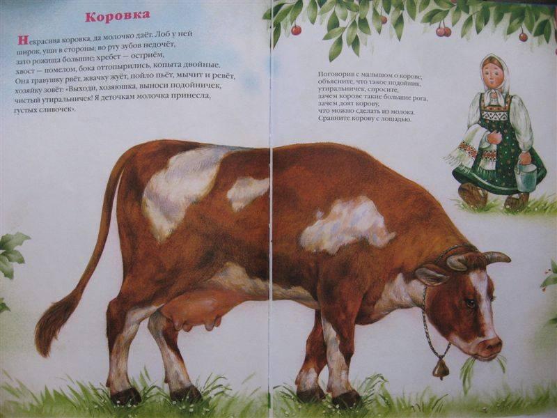 Иллюстрация 1 из 26 для Большая книга для малышей. Я и мир вокруг меня | Лабиринт - книги. Источник: Юта