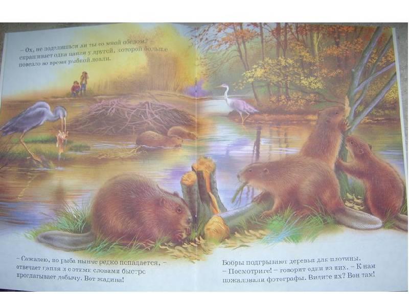 Иллюстрация 1 из 2 для Истории голубой речки | Лабиринт - книги. Источник: мама малыша