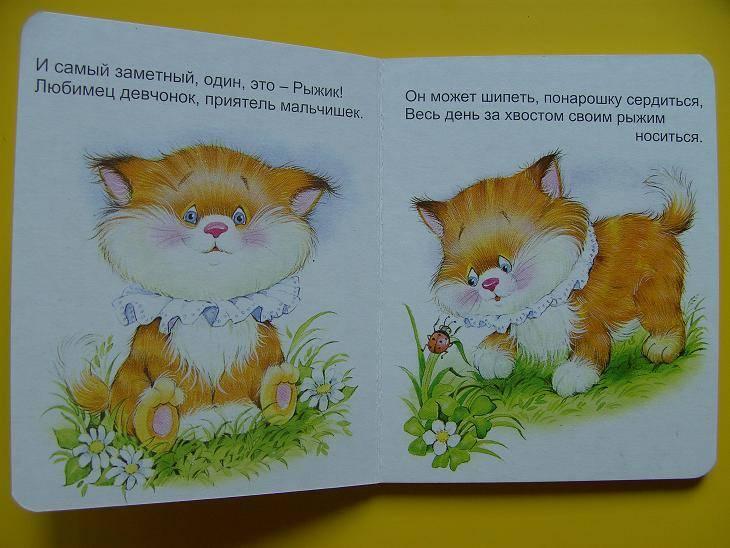 Иллюстрация 1 из 19 для Котенок Рыжик - Владимир Борисов | Лабиринт - книги. Источник: мама малыша