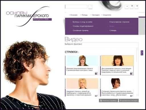 Иллюстрация 1 из 3 для Основы парикмахерского искусства (DVDpc) | Лабиринт - софт. Источник: Юлия7
