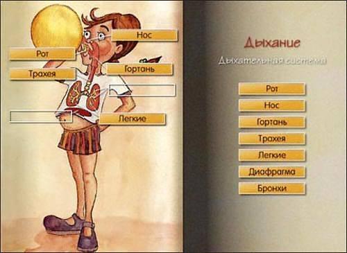 Иллюстрация 1 из 4 для Мышка Мия и Большая Шляпа. Для детей от 6 до 12 лет (2CD) | Лабиринт - книги. Источник: Юлия7
