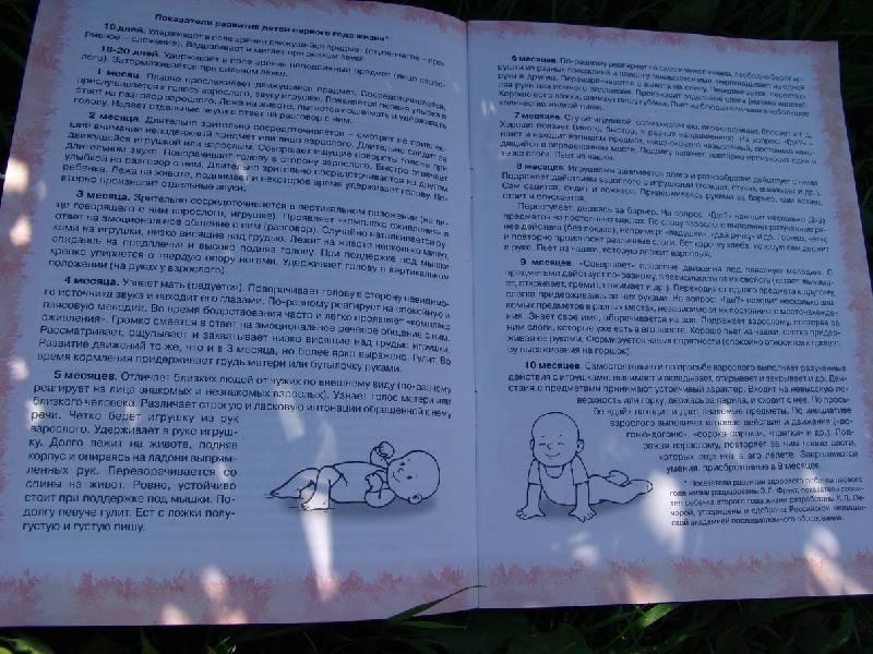 Иллюстрация 1 из 2 для Погремушка: Показатели развития от 0 до 2 лет: Я расту. Я думаю. Я говорю | Лабиринт - книги. Источник: Лаванда