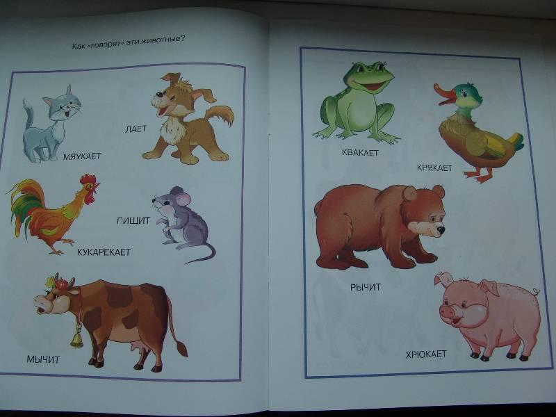 Иллюстрация 1 из 7 для От слова к рассказу: Для детей 2-3 лет - Ольга Земцова | Лабиринт - книги. Источник: Лаванда