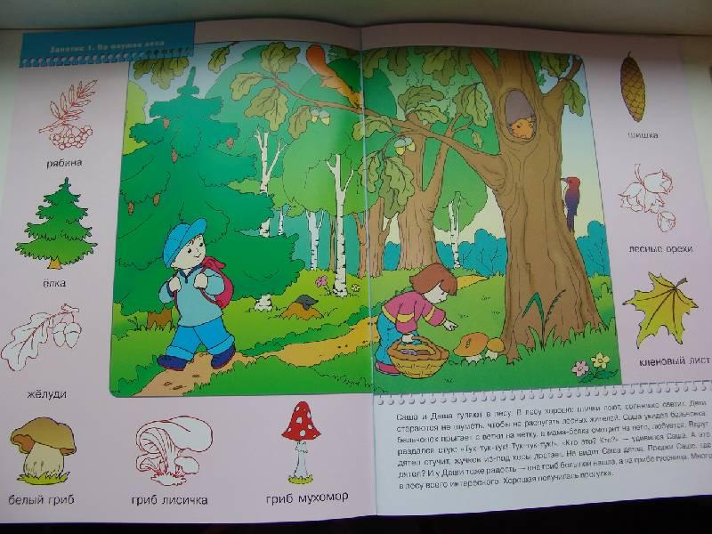 Иллюстрация 1 из 19 для На лесной полянке. Занятия с детьми 2-3 лет | Лабиринт - книги. Источник: Лаванда