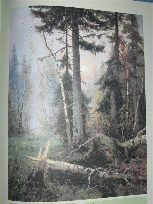 Иллюстрация 1 из 4 для Клевер - Майорова, Скоков | Лабиринт - книги. Источник: Юта