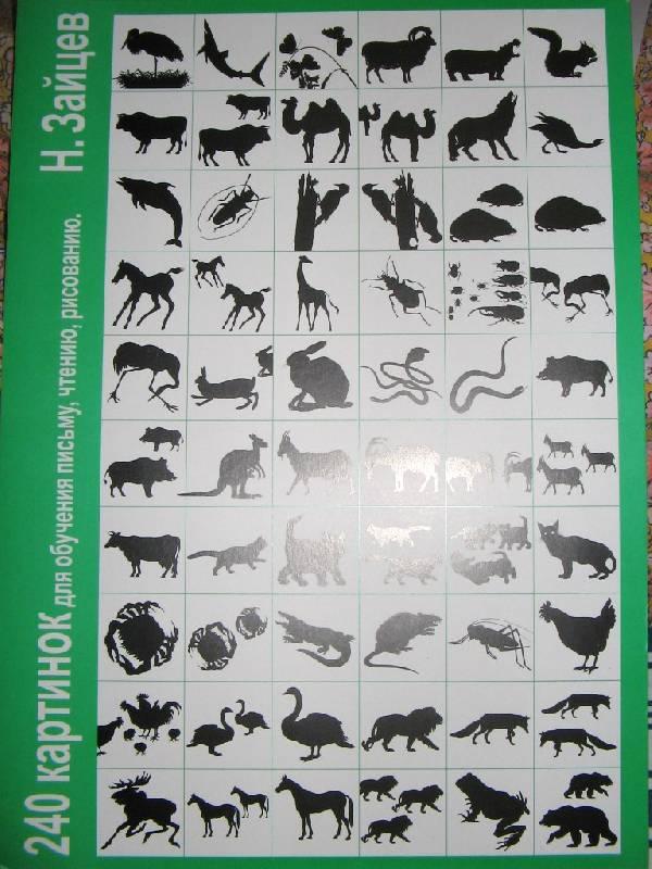 Иллюстрация 1 из 15 для 240 картинок для обучения письму, чтению, рисованию. Обучение по методике Зайцева - Николай Зайцев | Лабиринт - книги. Источник: Читательница