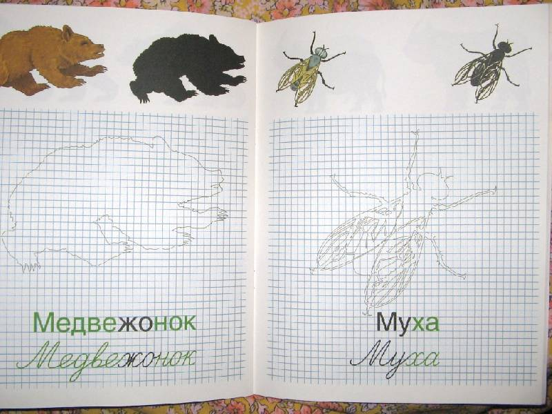 Иллюстрация 1 из 6 для Рисую, читаю, пишу. Методики Зайцева 4-6л   Лабиринт - книги. Источник: Читательница