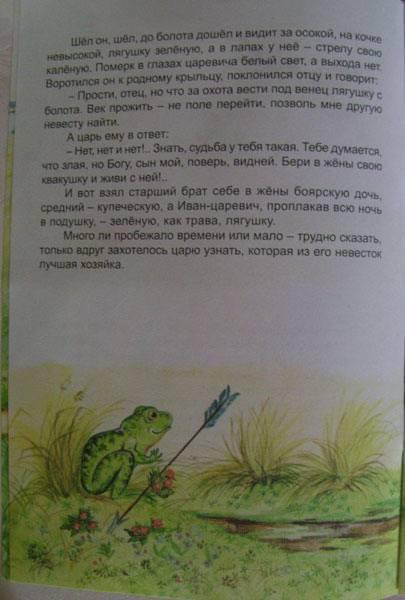 Иллюстрация 1 из 7 для Волшебные сказки: Царевна-лягушка - Игорь Мазнин   Лабиринт - книги. Источник: Солнышко