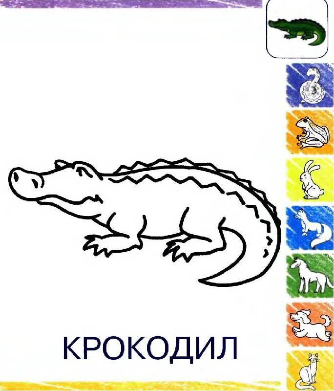 Иллюстрация 1 из 4 для Животные | Лабиринт - книги. Источник: Лана