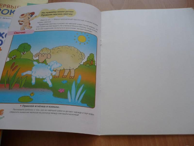 Иллюстрация 1 из 16 для Домашние животные. Первые уроки 3+ - Софья Буланова | Лабиринт - книги. Источник: Домбиблиотека
