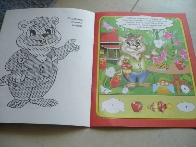 Иллюстрация 1 из 3 для Развивающие игры (петушок) | Лабиринт - книги. Источник: Домбиблиотека