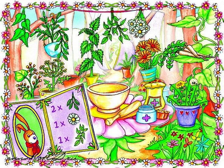 Иллюстрация 1 из 3 для Лесная клиника принцессы Лилифи (CDpc) | Лабиринт - софт. Источник: Юлия7