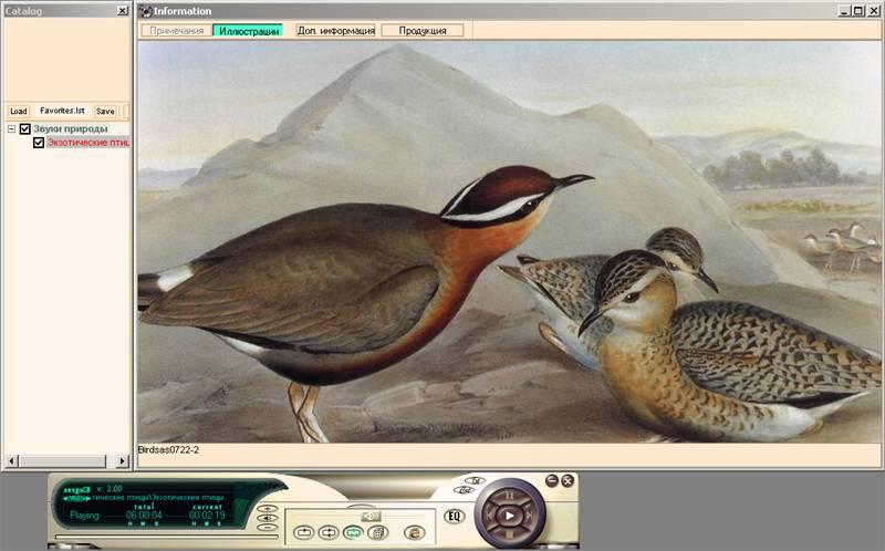 Иллюстрация 1 из 4 для Экзотические птицы (CDmp3) | Лабиринт - аудио. Источник: Юлия7
