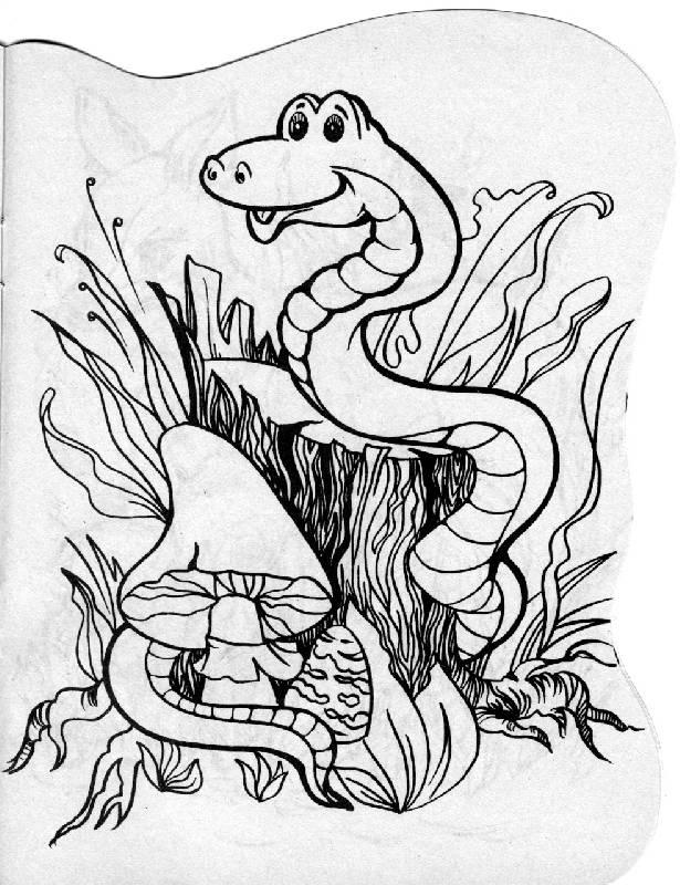Иллюстрация 1 из 2 для Кто живет в лесу?   Лабиринт - книги. Источник: РИВА