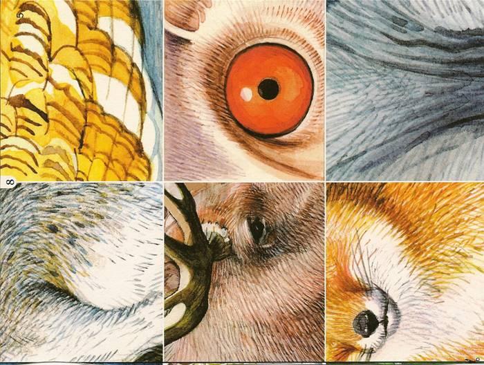 Иллюстрация 1 из 3 для Игры в папке: Найди животное - И. Мамаева | Лабиринт - игрушки. Источник: farnor