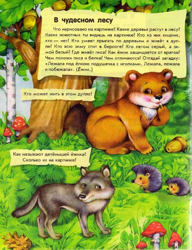 Иллюстрация 1 из 12 для О животных. Полезная книжка - Юлия Каспарова | Лабиринт - книги. Источник: С  М В