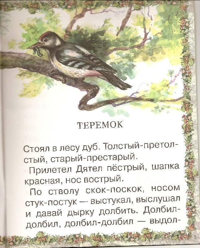 Иллюстрация 1 из 8 для Сказки: Теремок. Люля - Виталий Бианки   Лабиринт - книги. Источник: ТОЧКА