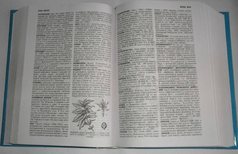 Иллюстрация 1 из 3 для Популярный энциклопедический словарь | Лабиринт - книги. Источник: Galina