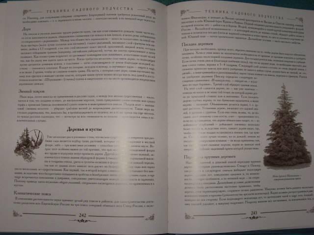 Иллюстрация 1 из 3 для Изящное садоводство и художественные сады. Историко-дидактический очерк - Арнольд Регель | Лабиринт - книги. Источник: Фомина  Анна Сергеевна