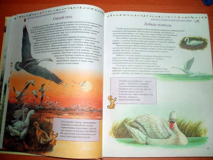 Иллюстрация 1 из 11 для Полная иллюстрированная энциклопедия животных для детей - Игорь Павлинов | Лабиринт - книги. Источник: Galia
