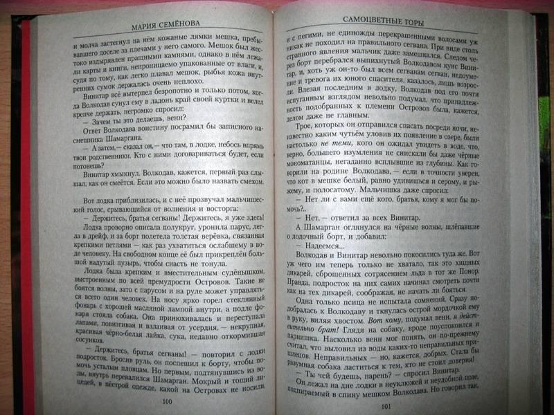 Иллюстрация 1 из 5 для Волкодав. Самоцветные горы: Роман - Мария Семенова | Лабиринт - книги. Источник: -=  Елена =-