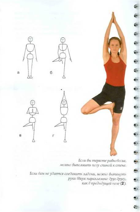 Иллюстрация 1 из 7 для Простая йога для начинающих - Мария Шифферс | Лабиринт - книги. Источник: Павлинова  Ирина Евгеньевна