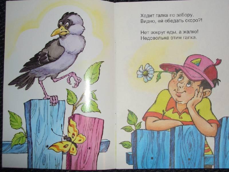 Иллюстрация 1 из 6 для Галка и воробей - Ефим Друц | Лабиринт - книги. Источник: sher