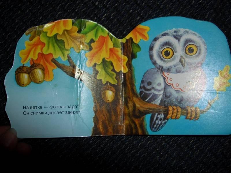 Иллюстрация 1 из 5 для Совенок | Лабиринт - книги. Источник: sher