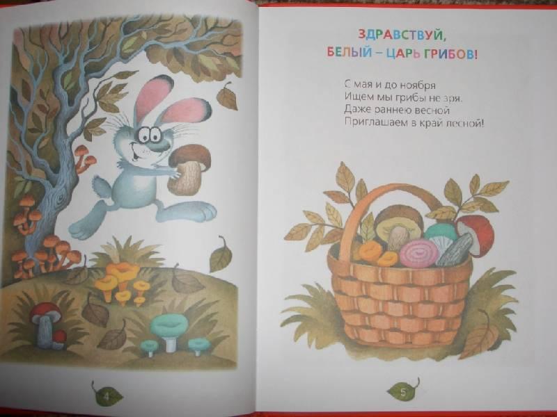 Иллюстрация 1 из 10 для Грибы-грибочки: Веселые строчки: Стихи, частушки, дразнилки - Маша Лукашкина | Лабиринт - книги. Источник: sher