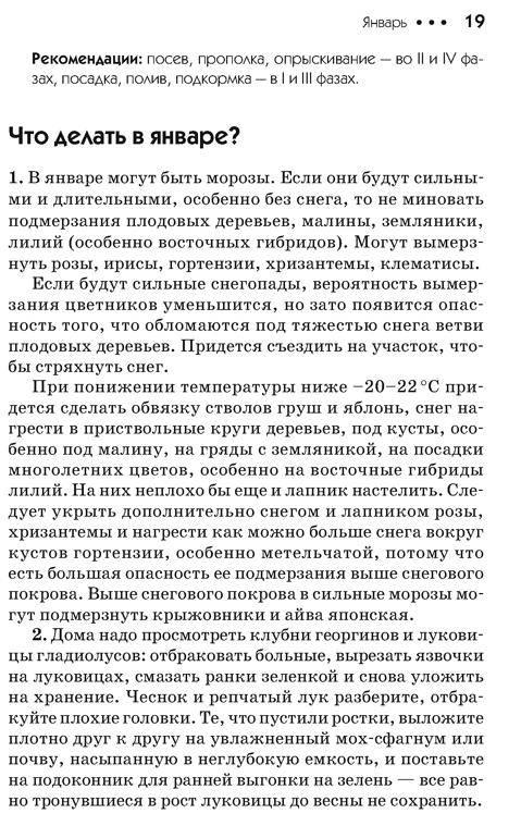 Иллюстрация 1 из 2 для Дачный лунный календарь на 2009 год - Галина Кизима | Лабиринт - книги. Источник: Joker