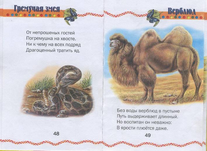 Иллюстрация 1 из 4 для Ребятам о зверятах: Стихи для детей - Елена Агинская   Лабиринт - книги. Источник: Пчёлка Майя
