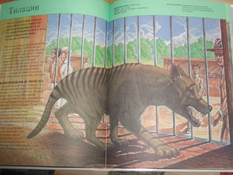 фото животные энциклопедия