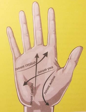 Иллюстрация 1 из 5 для Предсказание по руке - Фрэнк Клиффорд   Лабиринт - книги. Источник: Rumeur