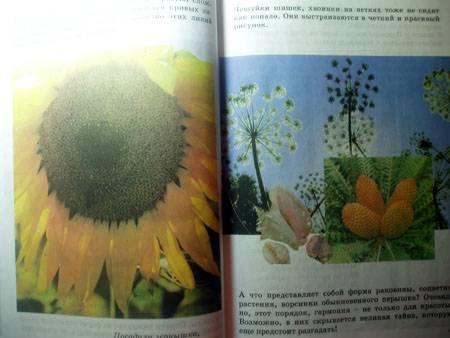 Иллюстрация 1 из 4 для Технология: Наш рукотворный мир. 3 класс - Наталья Конышева | Лабиринт - книги. Источник: Galia