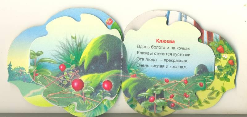 Иллюстрация 1 из 3 для Лесные ягоды - Ольга Крас | Лабиринт - книги. Источник: Спанч Боб