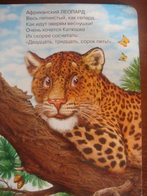 Иллюстрация 1 из 2 для В зоопарке - Людмила Шевченко | Лабиринт - книги. Источник: Дорофеева  Ольга