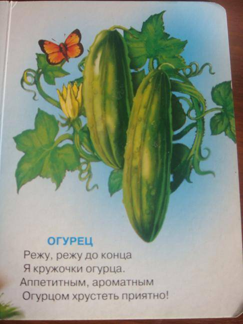 Иллюстрация 1 из 2 для Что растет в огороде - Нина Никитина | Лабиринт - книги. Источник: Дорофеева  Ольга