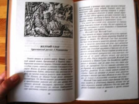 Иллюстрация 1 из 7 для Хозяева джунглей: Рассказы о тиграх и слонах | Лабиринт - книги. Источник: Папи.рус