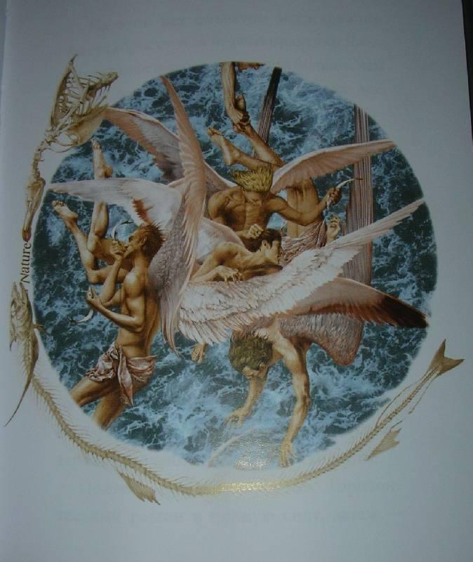 Иллюстрация 1 из 2 для Чайка Джонатан Ливингстон - Ричард Бах | Лабиринт - книги. Источник: Sundance
