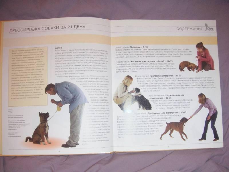 Иллюстрация 1 из 17 для Дрессировка собаки за 21 день - Колин Теннант | Лабиринт - книги. Источник: kisska