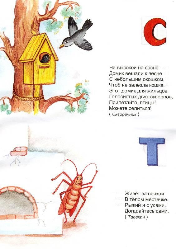 Иллюстрация 1 из 3 для Алфавитные загадки. - Надежда Притулина | Лабиринт - книги. Источник: РИВА