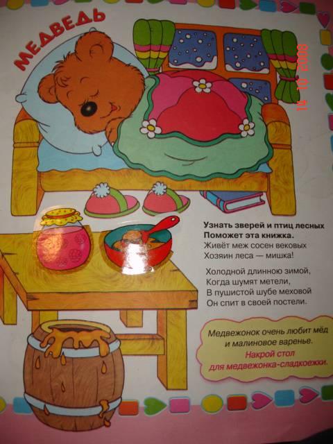 Иллюстрация 1 из 5 для Лесные зверюшки - Елена Фролова | Лабиринт - книги. Источник: frekenbok