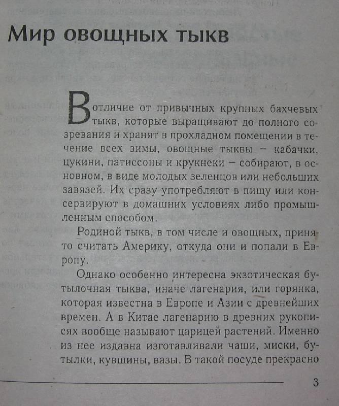 Иллюстрация 1 из 5 для Вкусные кабачки - Ирина Румянцева | Лабиринт - книги. Источник: Caaat