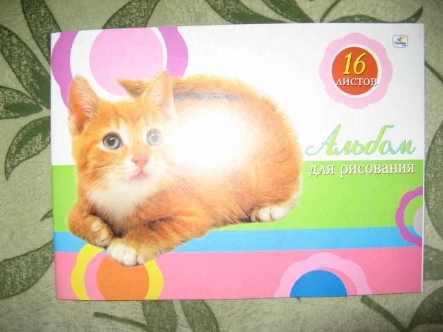 Иллюстрация 1 из 2 для Альбом для рисования 16 листов (А116325) Милый котенок | Лабиринт - канцтовы. Источник: libe
