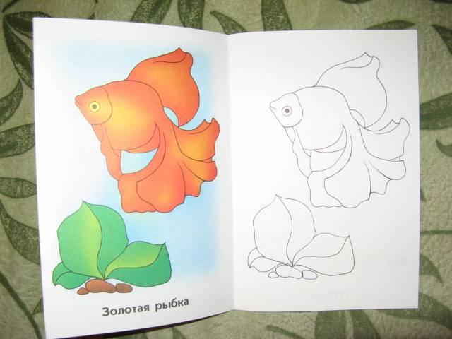 Иллюстрация 1 из 5 для Аквариумные рыбки. Раскраска для детей  6-7лет | Лабиринт - книги. Источник: libe