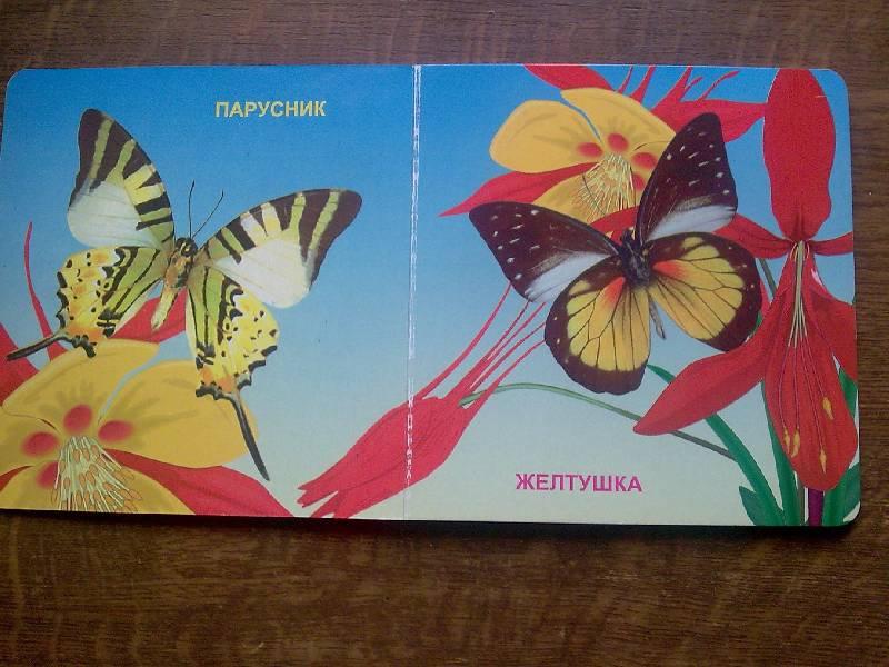Иллюстрация 1 из 3 для Бабочки | Лабиринт - книги. Источник: Honny